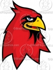 Cartoon Cardinal Mascot Clipart Graphics