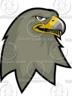 Cartoon Falcon Mascot Clipart Graphics