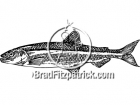 Black and White Smelt Clipart