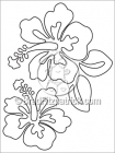 Hibiscus Coloring Sheet & Hibiscus Coloring Page